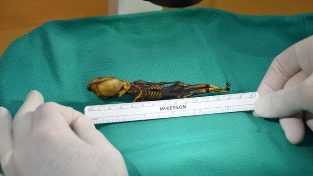 un esqueleto momificado