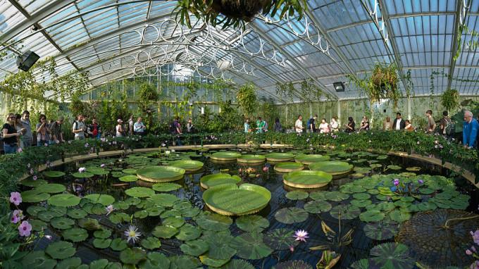Jardines increíbles alrededor del mundo para inspirarte6